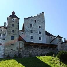 צדקת הטירה